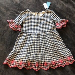 Blue gingham dress w/ pink embroidered sleeves